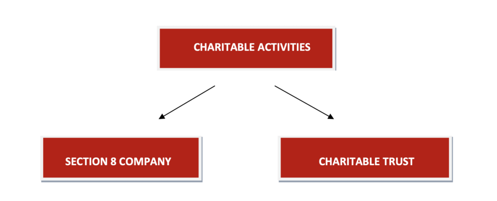 What structure can be used for carrying out Charitable Activities